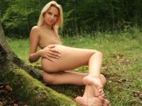 Zöld erdőben...